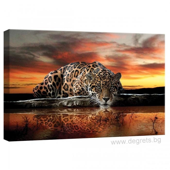 Картина Канава Леопард 2 S