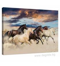 Картина Канава Диви коне