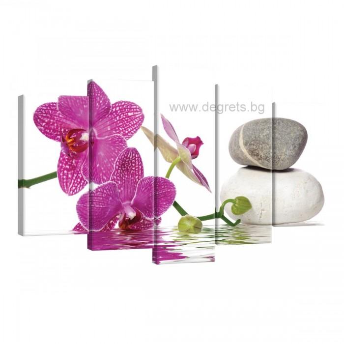 Картина Канава Орхидея елегант 5 Сет 5 части