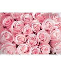 Фототапет Букет от рози