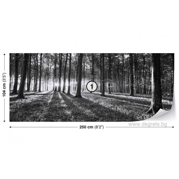 Фототапет флис Черно-бяла гора