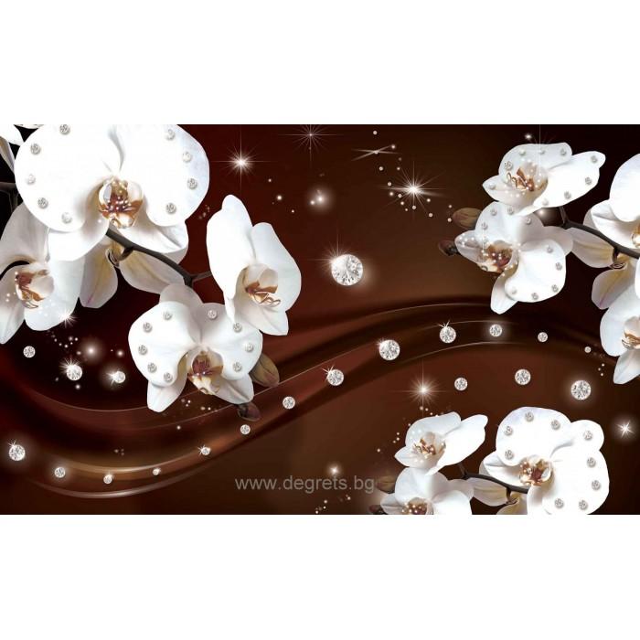 Фототапет Абстракция Орхидеи 1 3D
