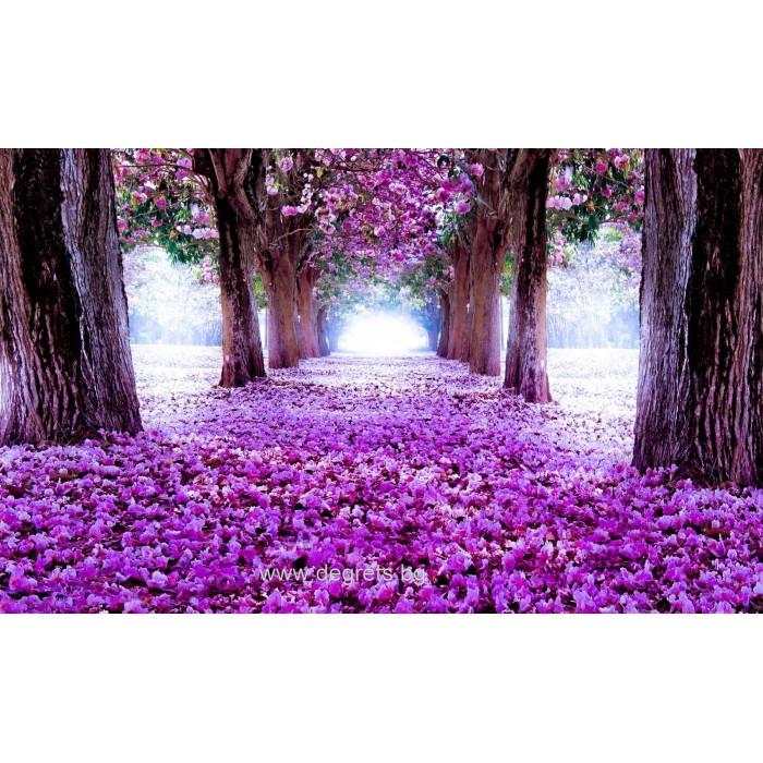 Фототапет Лилава пътека от цветя 3D L 1
