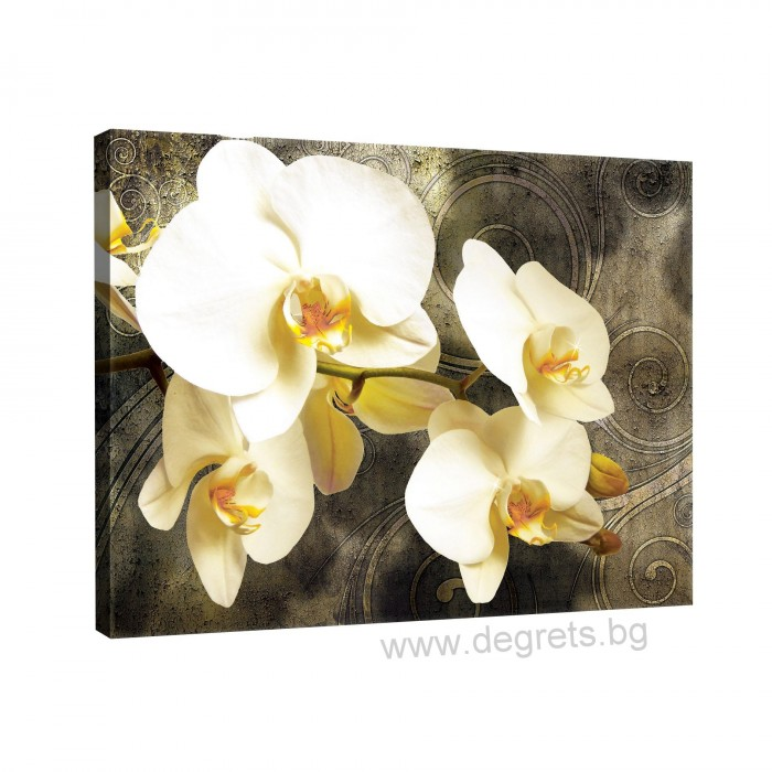 Картина Канава Орхидея 2