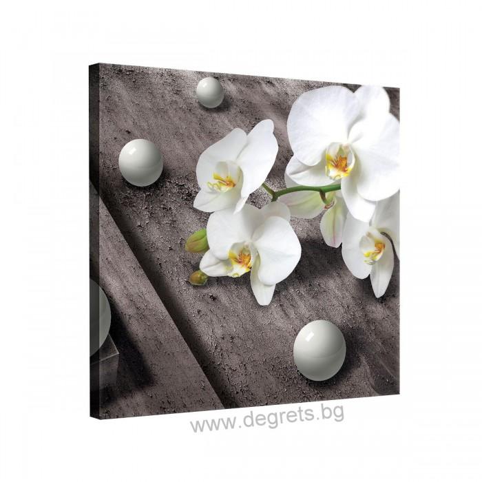 Картина Канава Орхидея 5