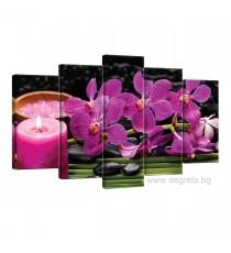 Картина Канава Орхидея 4 Сет 5 части