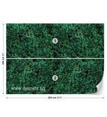 Фототапет Трева 3D L