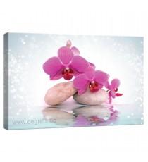 Картина Канава Орхидея 9
