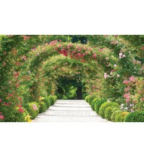 Фототапет Тунел от цветя 3D