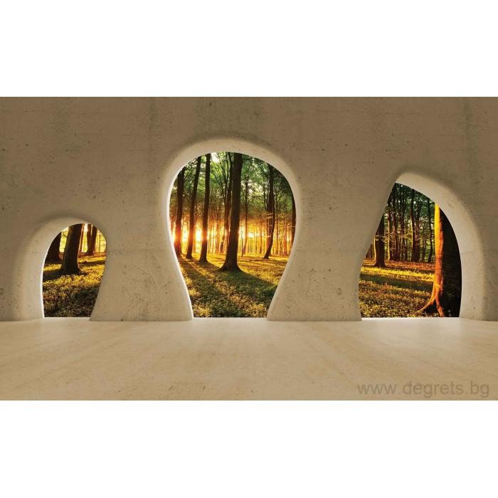 Фототапет Изглед към гората