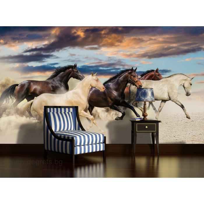 Фототапет Диви коне