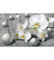 Фототапет Абстракция орхидея 3D