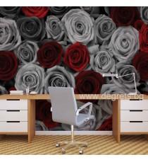 Фототапет Рози червено-сиви L