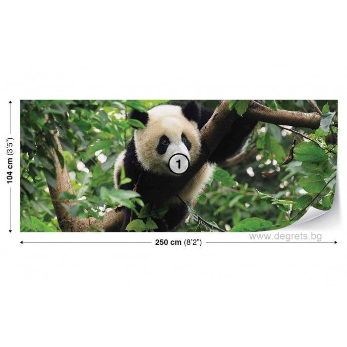 Фототапет флис Панда