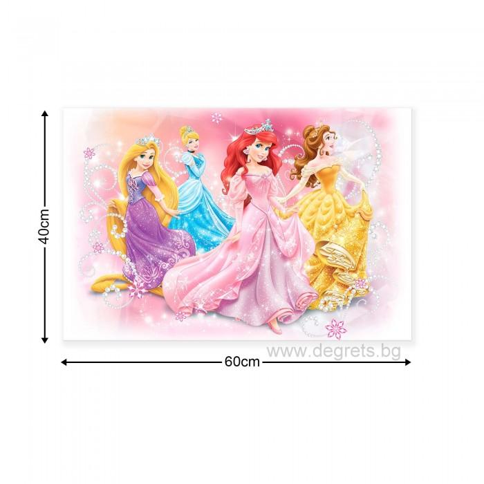 Картина Канава Дисни Принцеси 4