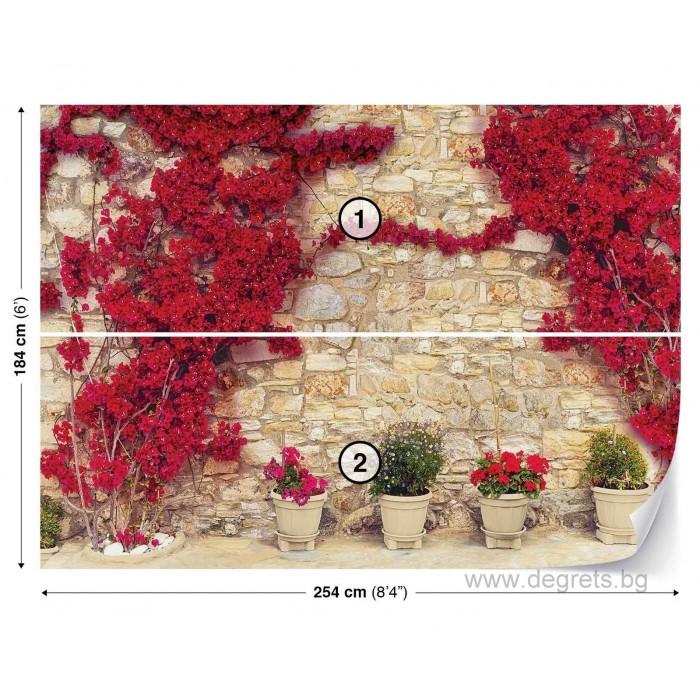 Фототапет Стена с червени цветя 1