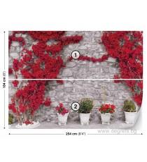 Фототапет Стена с червени цветя 2 L