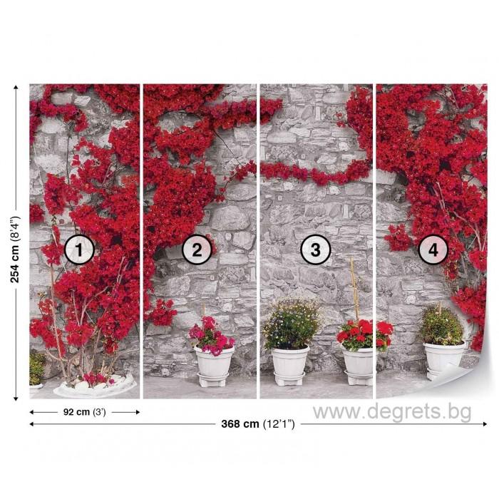 Фототапет Стена с червени цветя 2 XL