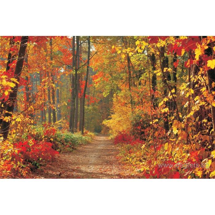 Фототапет Златна есен