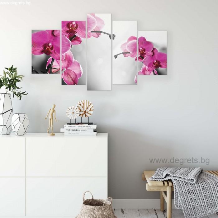 Картина Канава Орхидея циклама 1 Сет 5 части