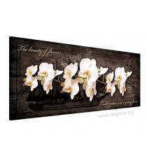 Картина Канава Орхидея 7
