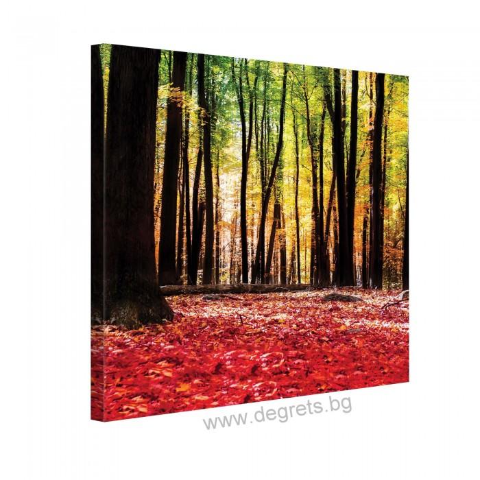 Картина Канава Есенна приказка