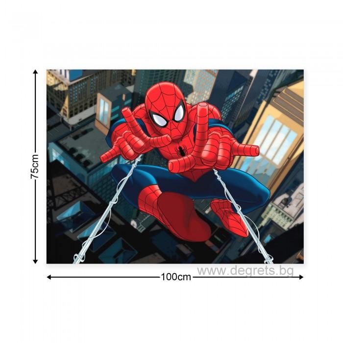 Картина Канава Спайдърмен 1