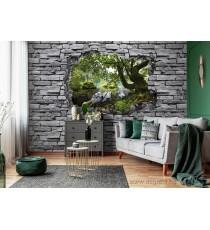 Фототапет Поглед през Стената 3D XL