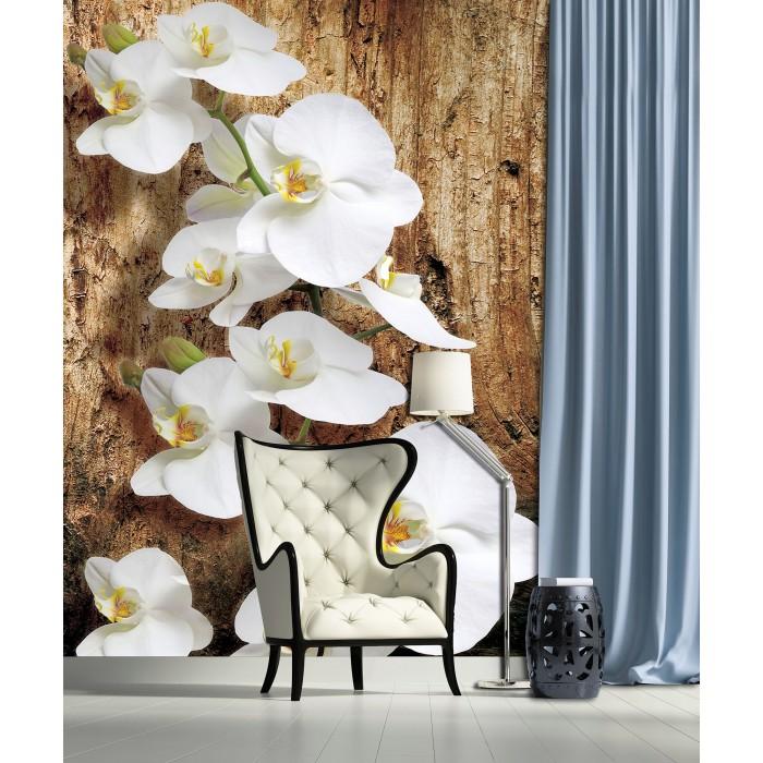 Фототапет Орхидея 3D