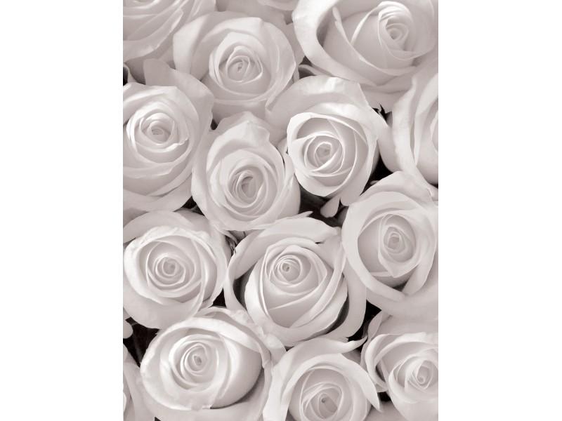 Фототапет Бели рози 3D