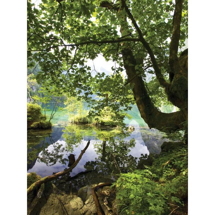 Фототапет Езеро в гората