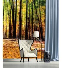 Фототапет Есенна гора 2