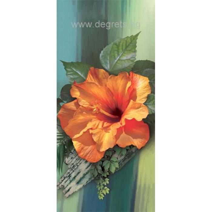 Фототапет Китайска роза