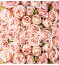 Фототапет Букет от рози 2