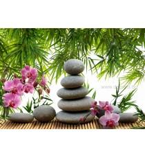 Фототапет Медитация