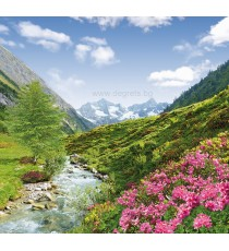 Фототапет Планинска елегия