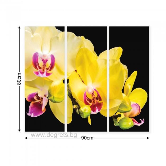 Картина Канава Жълта орхидея 3D Сет 3 части