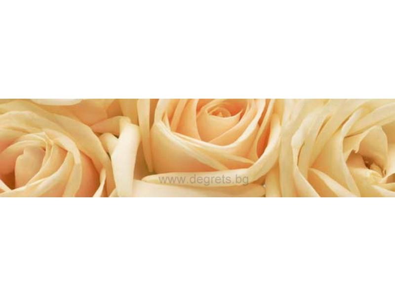 Пано Рози