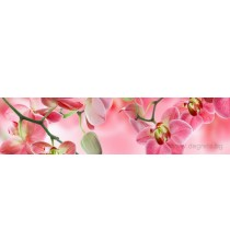 Пано Орхидея 3