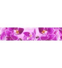 Пано Орхидея 6