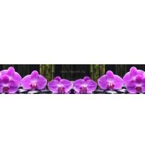 Пано Орхидея 8