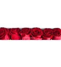 Пано Рози 1
