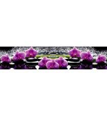 Пано Орхидея 16