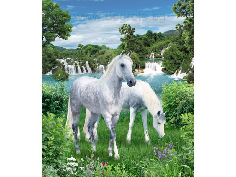 Фототапет Бели коне