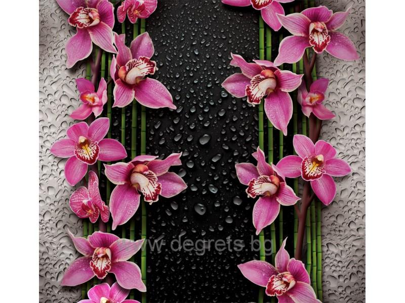 Фототапет Пурпурни орхидеи