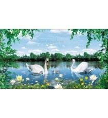 Фототапет Лебеди и лилии