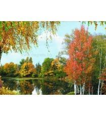 Фототапет Кадифена есен