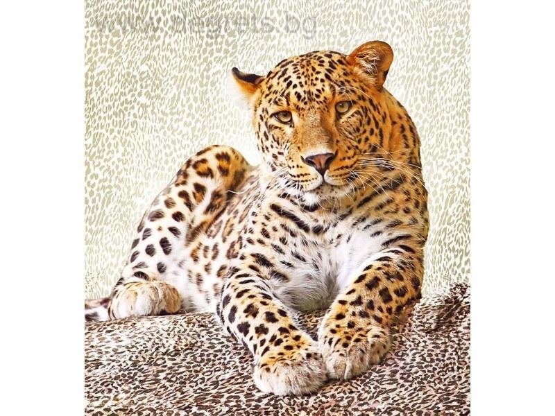 Фототапет Леопард